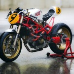 """Radical Ducati """"9 1/2"""""""