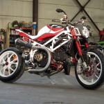"""Radical Ducati """"999 Pursang"""""""